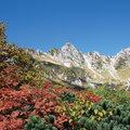 【関東周辺】絶景! 秋めく彩りの山へ(2)