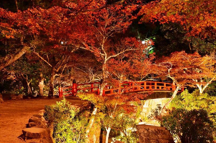 宮島の紅葉谷(もみじだに)公園