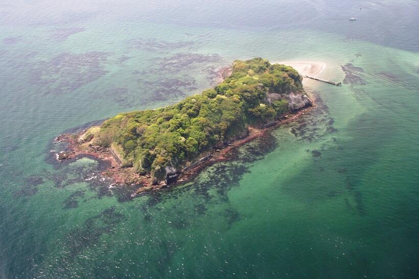 三笠桟橋から所要10分で着く猿島