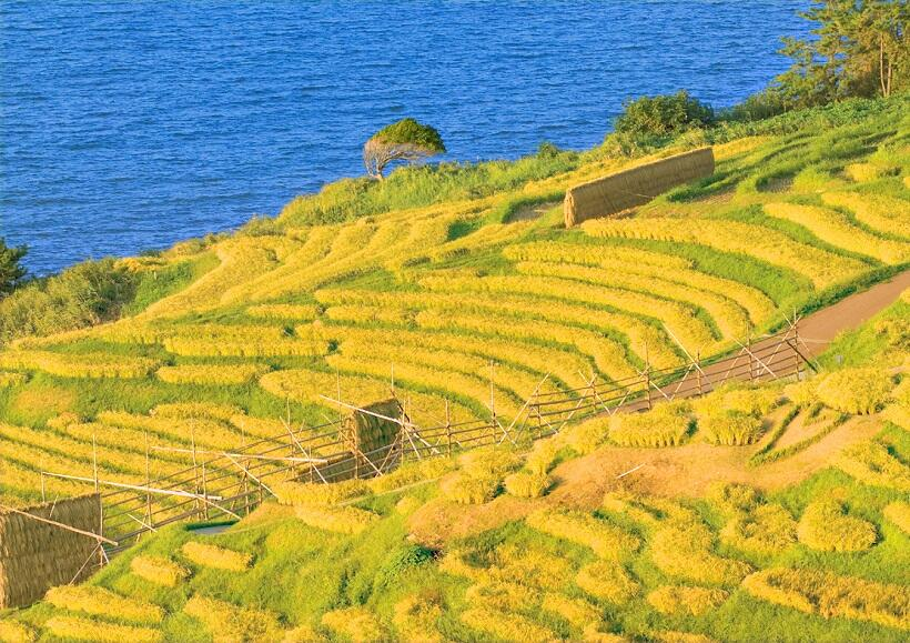 世界農業遺産 能登の里山、里海