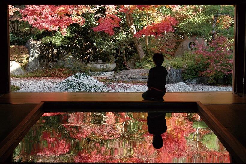 長崎・寿福寺で「逆さ紅葉」公開