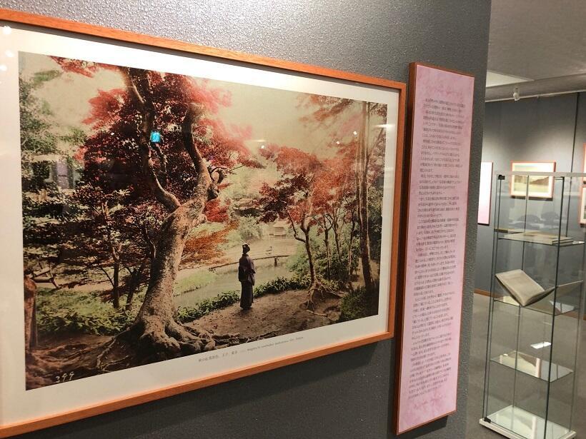 19世紀日本の紅葉、富士山、宮島……。オスマン帝国の写真コレクション(上)