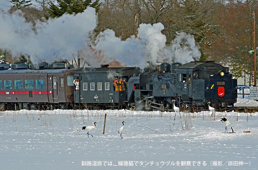 映画、テレビドラマなどの名場面生む北海道東部の絶景鉄道・釧網線の世界遺産への登録を