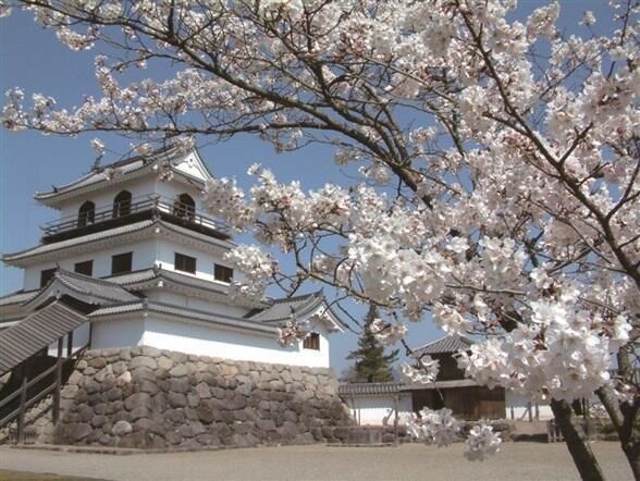 桜に彩られた白石城