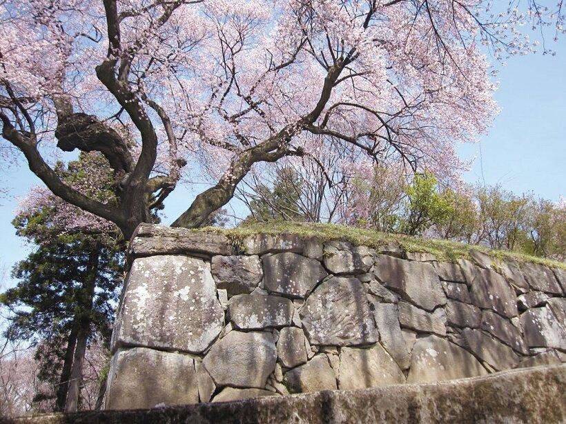 天空の城下町と沼田城を訪ねて