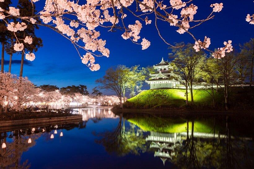 日本三大夜桜の高田城へ