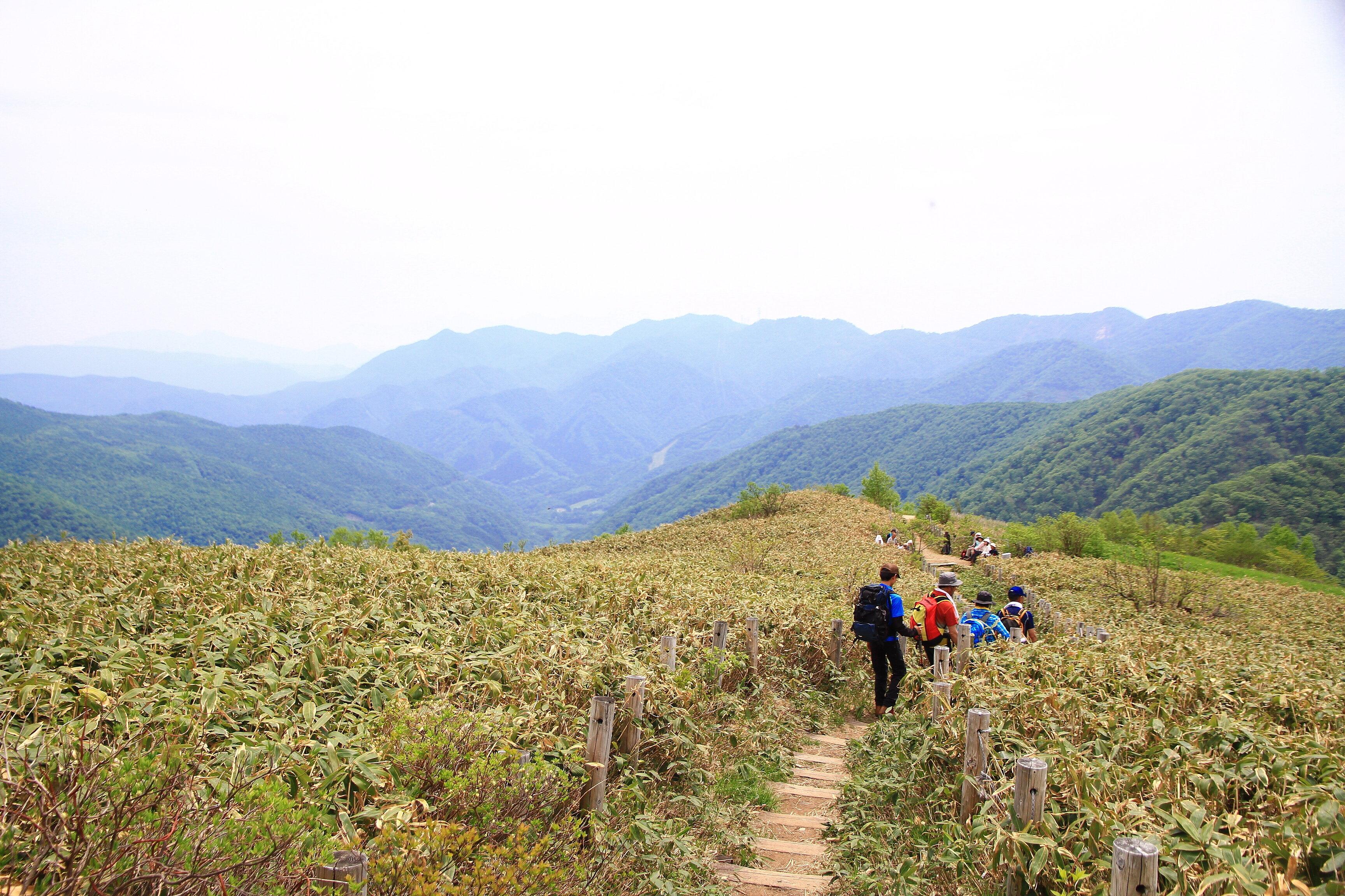 三国山登山道