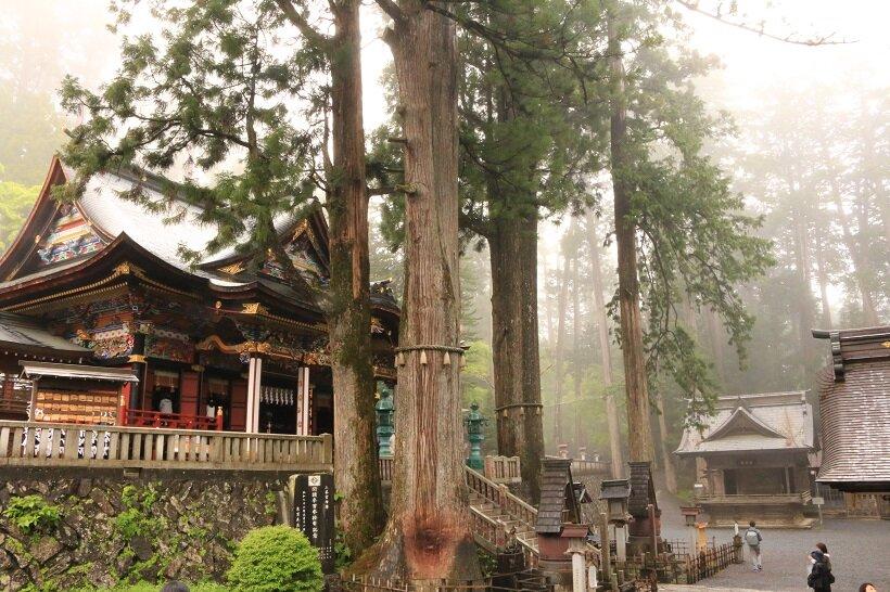 早朝の三峯神社境内
