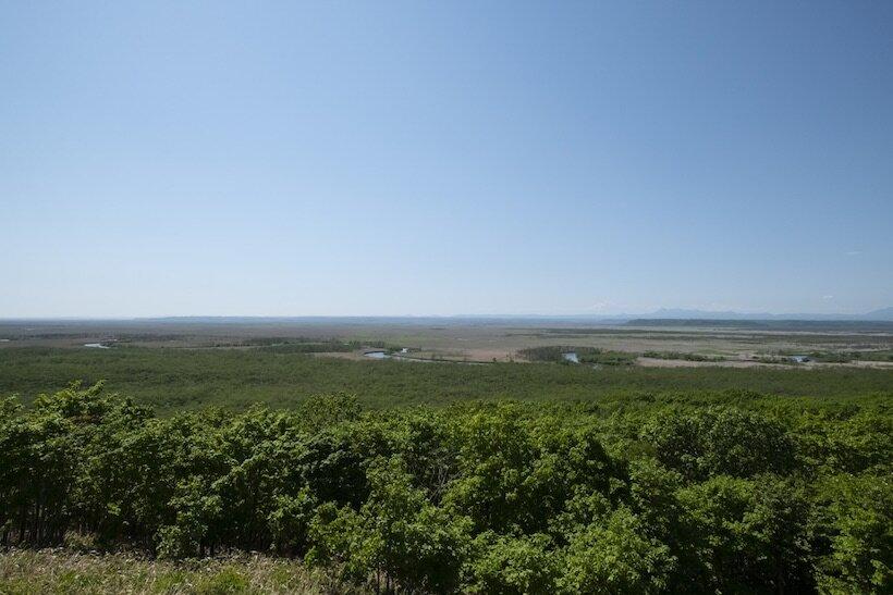 涼風吹く釧路湿原を走る くしろ湿原ノロッコ号(2)