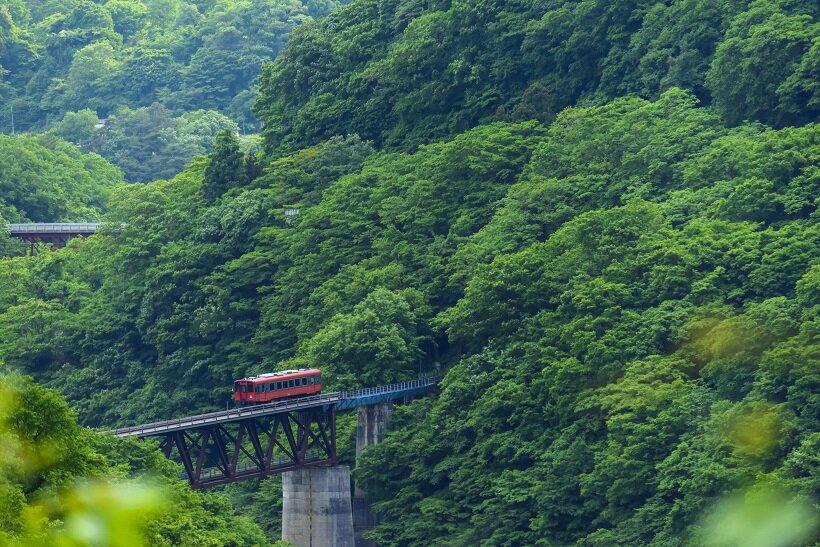 岩 鉄道 野