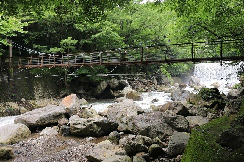 チェンバレンの散歩道で人気のつり橋