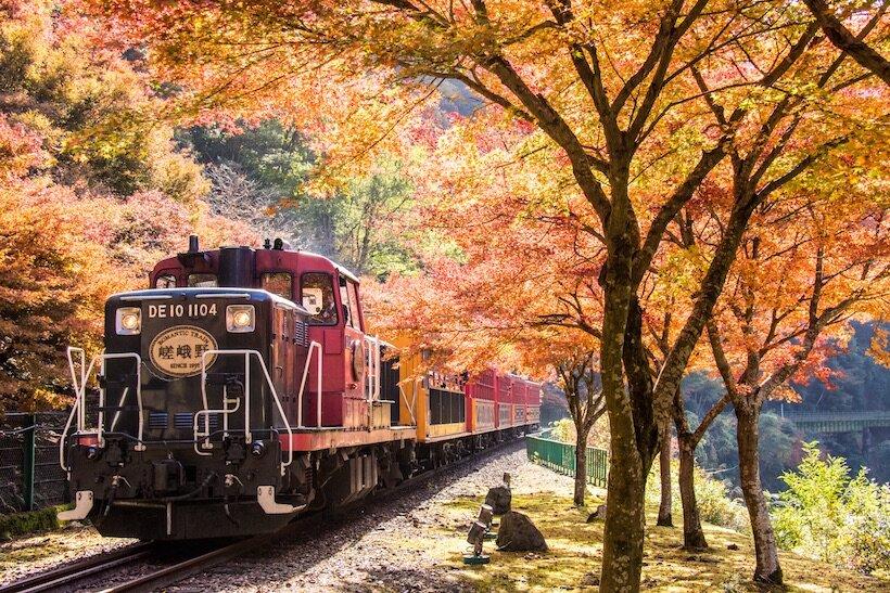 予約 京都 トロッコ 列車