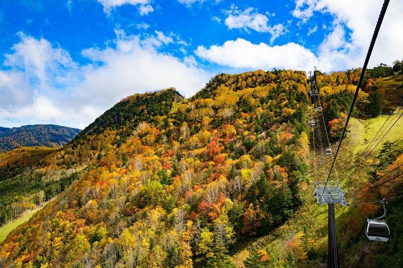標高の違いで様々な紅葉を楽しめる日光白根山ロープウェイ
