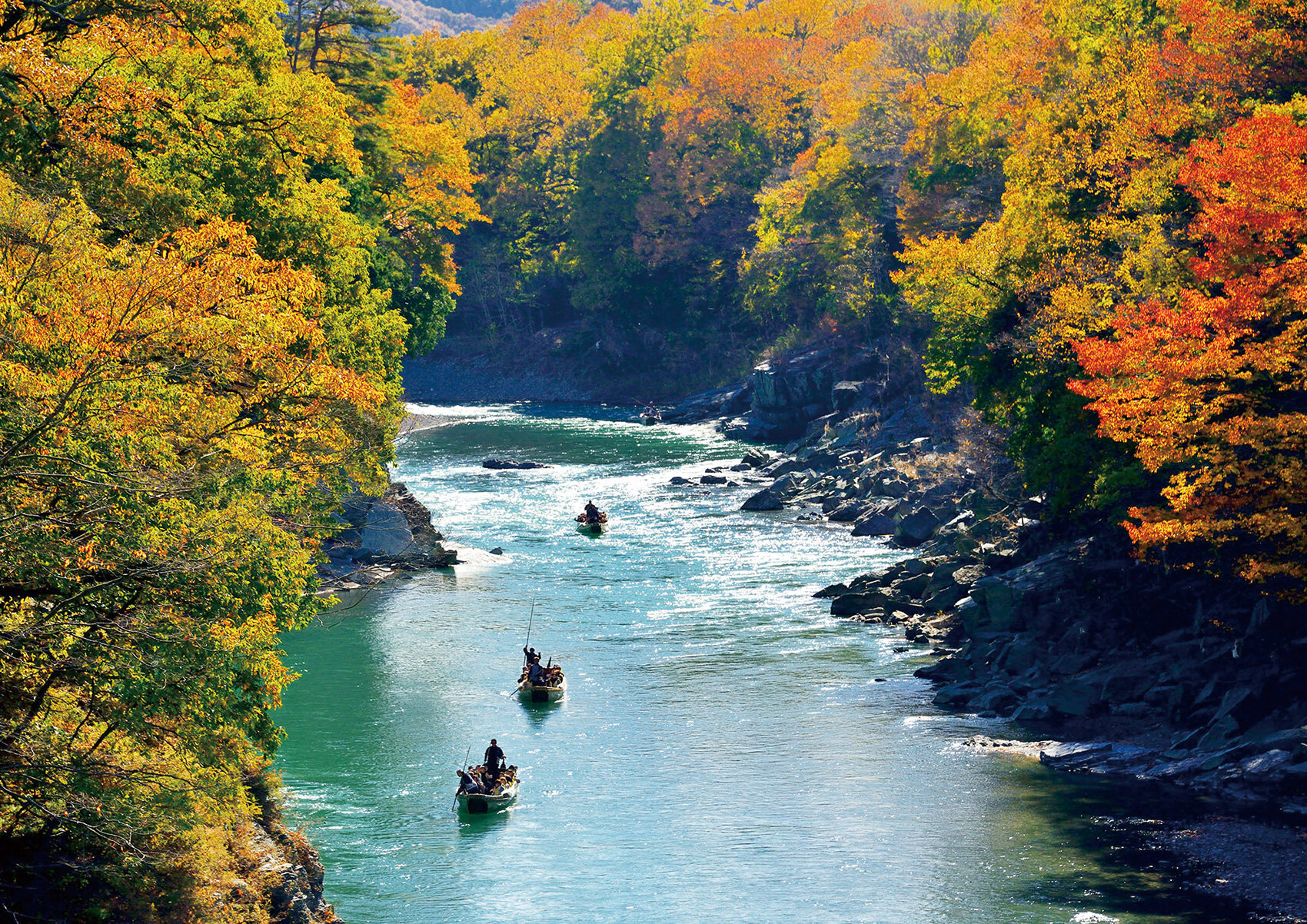 【関東周辺】絶景! 秋めく彩りの山へ(1)