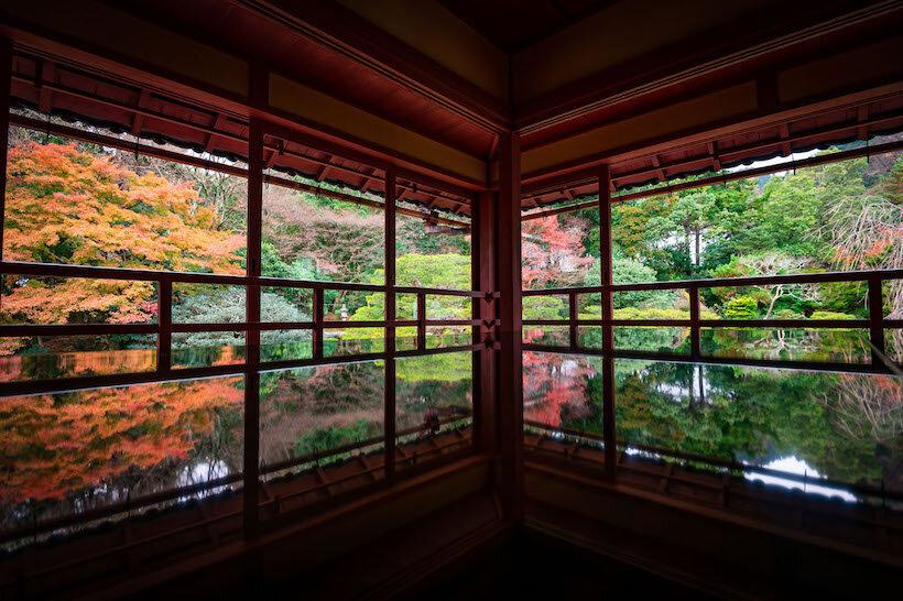 紅葉に覆われる参道を抜けて明智光秀ゆかりの西教寺へ(2)