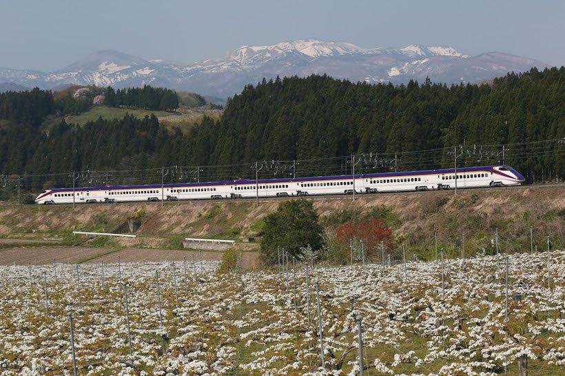 フルムーン夫婦グリーンパスで新幹線・全国旅行(2)