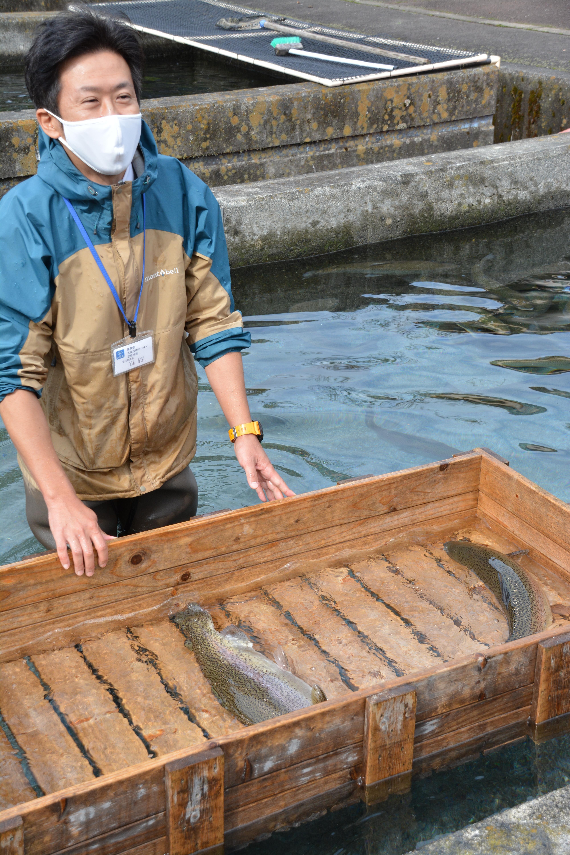 新ブランド魚「富士の介」を堪能する