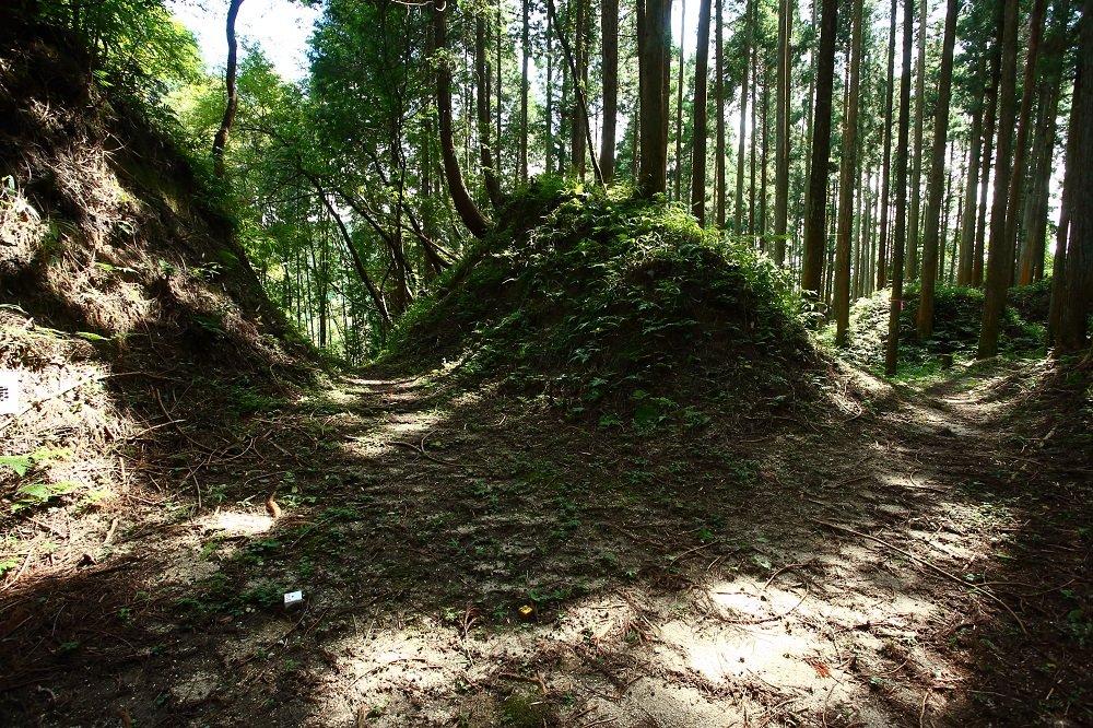 【明知鉄道】山城が人気です!