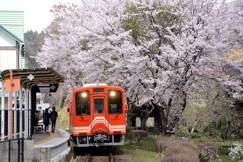 明知鉄道で鉄カードをゲット!