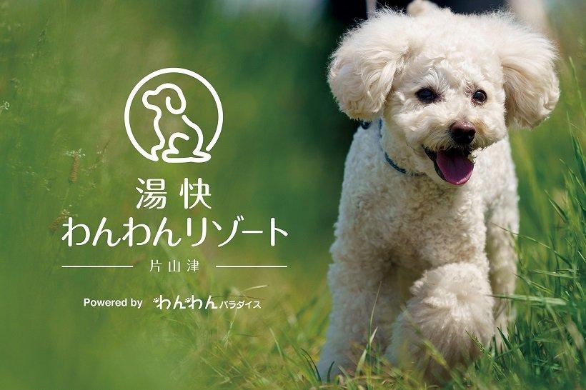 片山津温泉に「愛犬宿」誕生