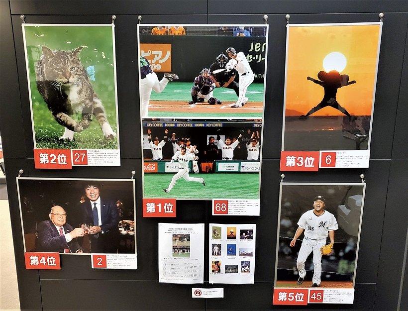 プロ野球の名ショット展示中