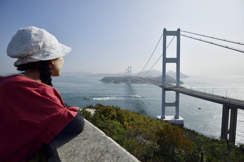 糸山公園展望台から見た来島海峡大橋