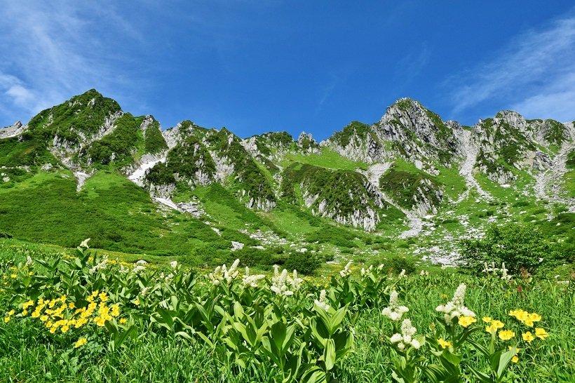 一面に高山植物が咲き誇る千畳敷カール