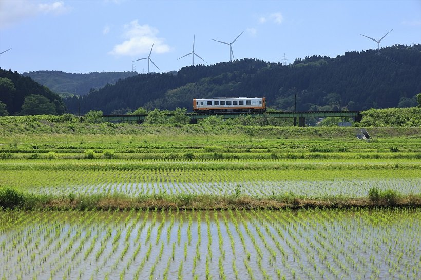 車窓に水田を見ながら1両編成の列車がのんびり走る(子吉―鮎川駅間)